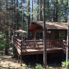 PaPa Bear Cabin