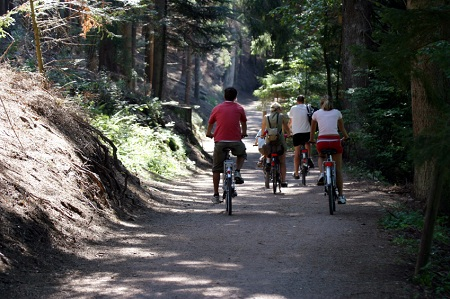 Biking in Yosemite