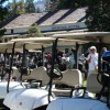 Wawona golf carts