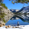 Fewer tourists at Tenaya Lake